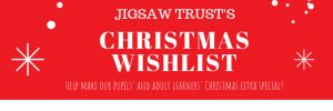 Jigsaw Trust Christmas Amazon Wishlist